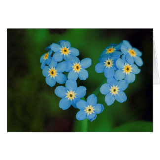Heart Shaped Forget-me-not Flowers Card