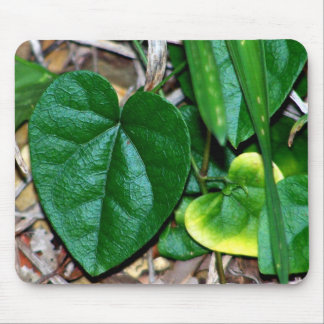 Heart Shaped Leaves Vine Mouse Pads