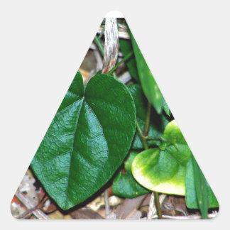 Heart Shaped Leaves Vine Triangle Sticker