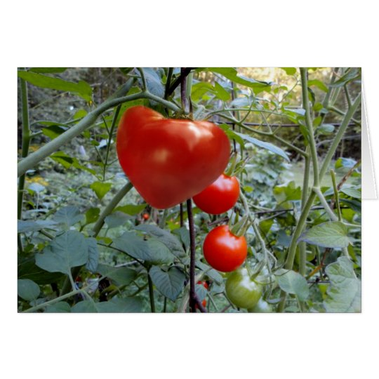 "Heart Shaped Tomato ""PICK ME!"" Card"