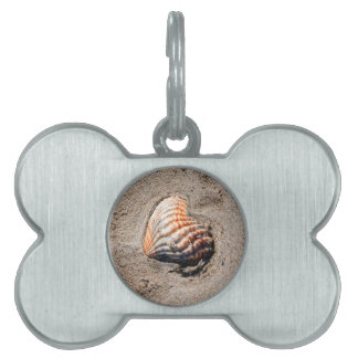 heart shells on the beach pet name tag
