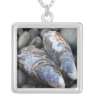 Heart Shells Silver Plated Necklace