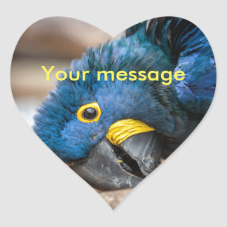Heart sticker cute blue Hyacinth Macaw parrot