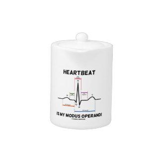 Heartbeat Is My Modus Operandi (Electrocardiogram)