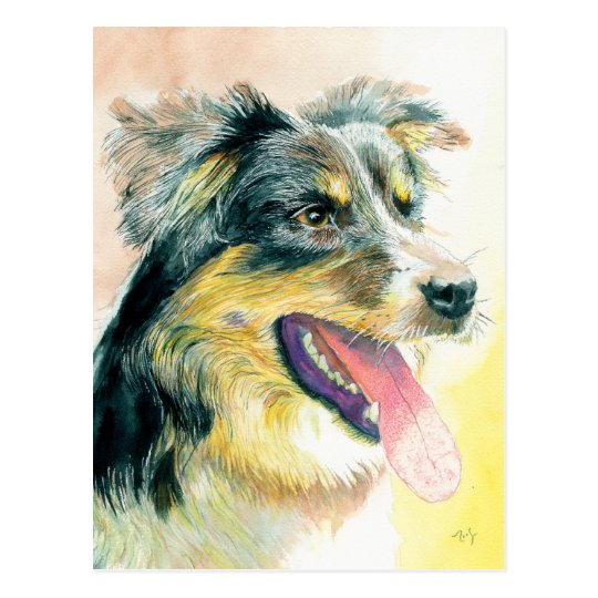 Heather the Border Collie Postcard