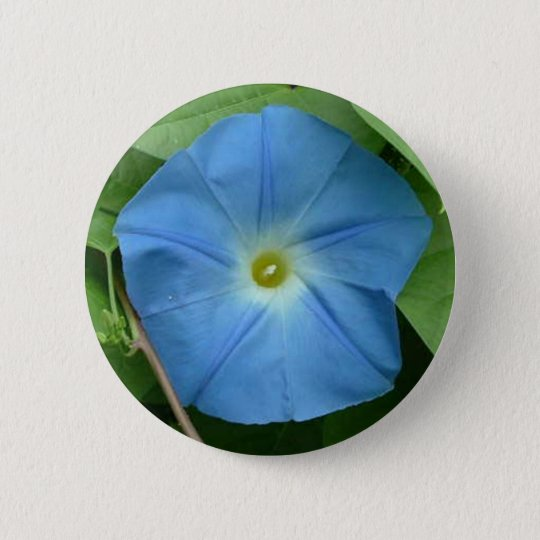 Heavenly Blue Morning Glory 6 Cm Round Badge