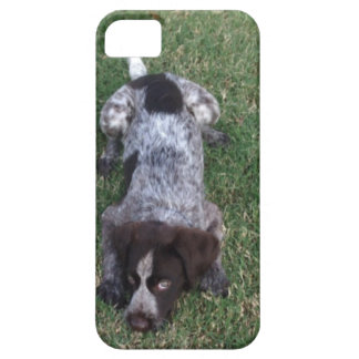 Heavenly Dogs Barely There iPhone 5 Case