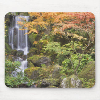 Heavenly Falls and autumn colors Mouse Pad