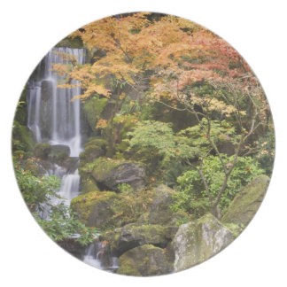 Heavenly Falls and autumn colors Plate