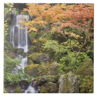 Heavenly Falls and autumn colors Tile