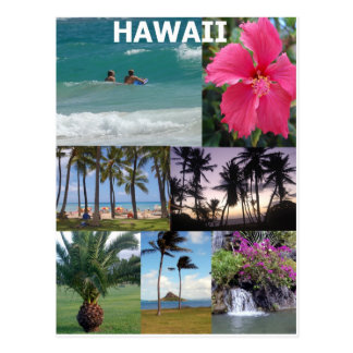 Heavenly Hawaii by Khoncepts Postcard