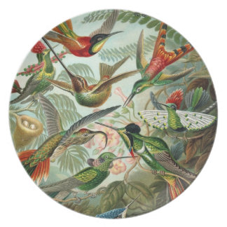 Heavenly Hummingbirds Plate