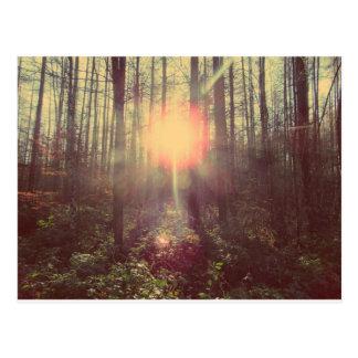Heaven's Light Postcard