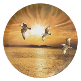 Heavens Wings Plates