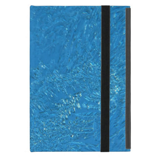 Heavy Frost iPad Mini Cases