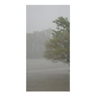 Heavy Windy Storm over a already Flooded Lake Custom Photo Card