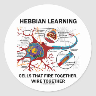 Hebbian Learning Cells Fire Together Wire Together Round Stickers
