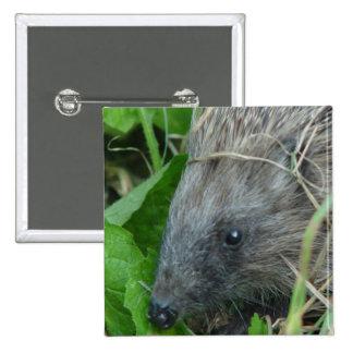 Hedgehog #1 15 cm square badge