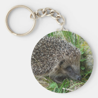 Hedgehog 1 keychain