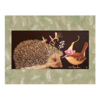 Hedgehog and carolina wren postcard
