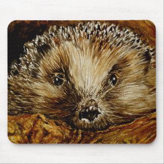 Hedgehog art on a mousemat