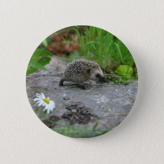 Hedgehog button - customizable