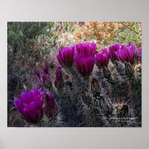 Purple Desert Flower Art Wall Decor Zazzle Co Uk