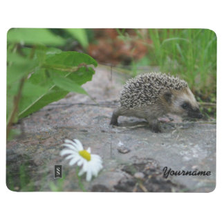 Hedgehog custom pocket journal
