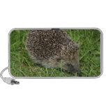 Hedgehog Doodle Speakers Travelling Speaker