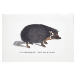 Hedgehog Door Mat