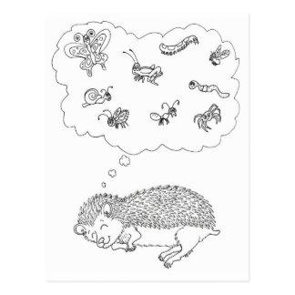 Hedgehog Dreams Postcard