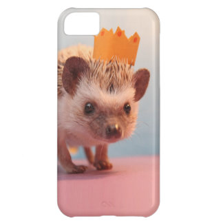 Hedgehog Happiness iPhone 5C Case