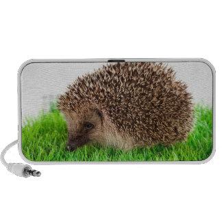 hedgehog haut-parleurs iPod