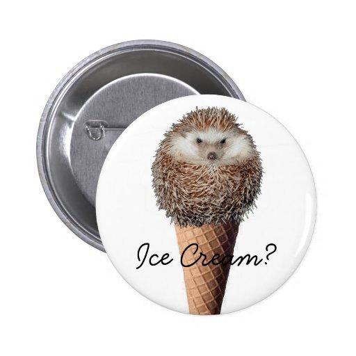 Hedgehog Ice Cream Pin