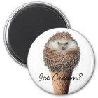Hedgehog Ice Cream Magnet