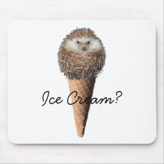 Hedgehog Ice Cream Mouse Mat
