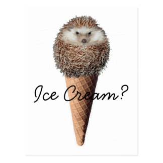 Hedgehog Ice Cream Postcard
