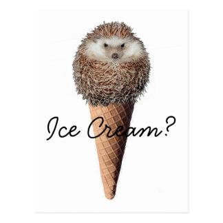 Hedgehog Ice Cream Post Card