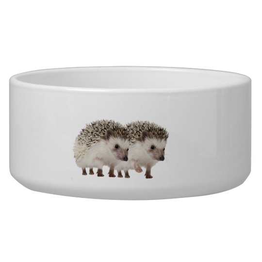 Hedgehog image for Large Pet Bowl