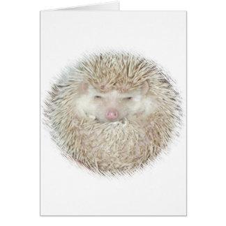 Hedgehog in a Ball Greeting Card