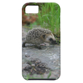 Hedgehog iPhone Case-Mate