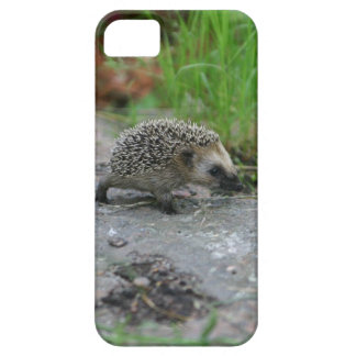 Hedgehog iPhone CaseMate iPhone 5 Cases