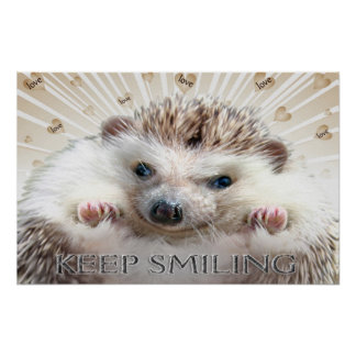 HEDGEHOG KEEP SMILING POSTER