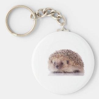 Hedgehog, Key Ring