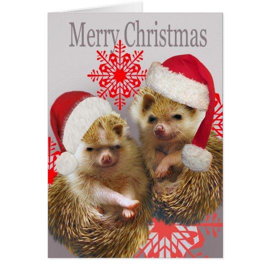 Hedgehog Merry Christmas Cards