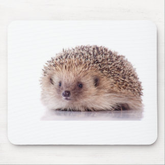 Hedgehog, Mouse Pad