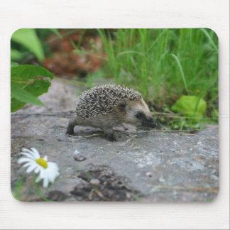Hedgehog mousepad - customizable