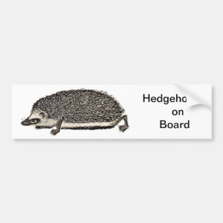 Hedgehog on Board - BUMPER STICKER