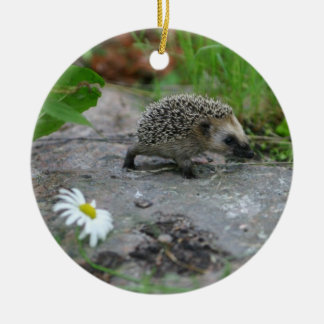 Hedgehog ornament - customizable