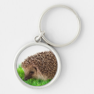 hedgehog, Silver-Colored round key ring